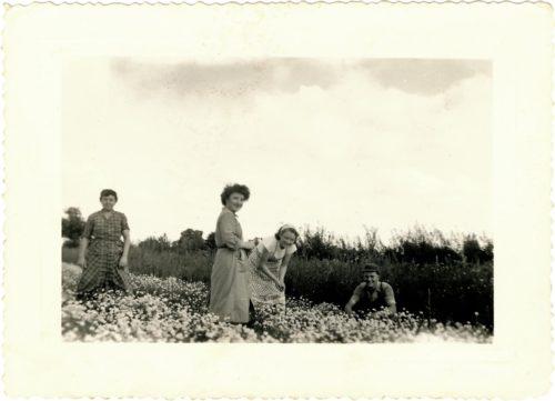Photo d'archive de la famille Vallée : Debout à gauche : Grand-mère Vallée, au centre Thérèse et Jeannette (saisonnières) à droite Jean Vallée (le fils)