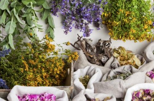 Vallée herboristerie plantes séchées complément alimentaire
